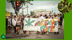 marcha da maconha_marihuana_vitoria_ok