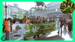 marcha da maconha_marihuana_madrid_ok