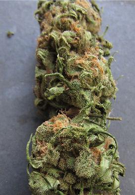 como-é-flor-da-cannabis-indica
