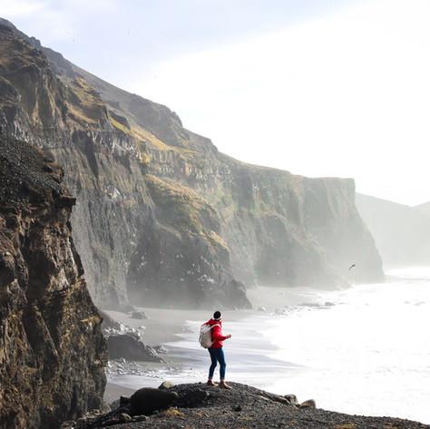 Wilderness Wellbeing Walks