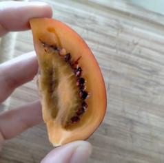 Tamarillo (Tree Tomato)