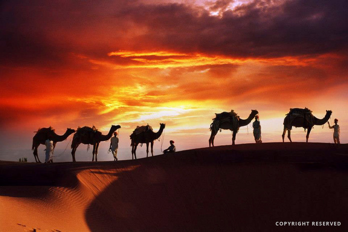 Caravan at Jaisalmer - S Rehmanjpg