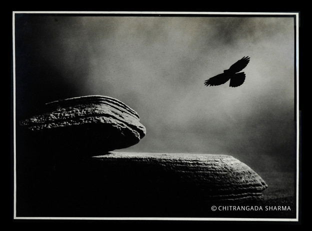 The Tor - Chitrangada Sharma.jpg