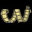 CAI Logo 2019.png