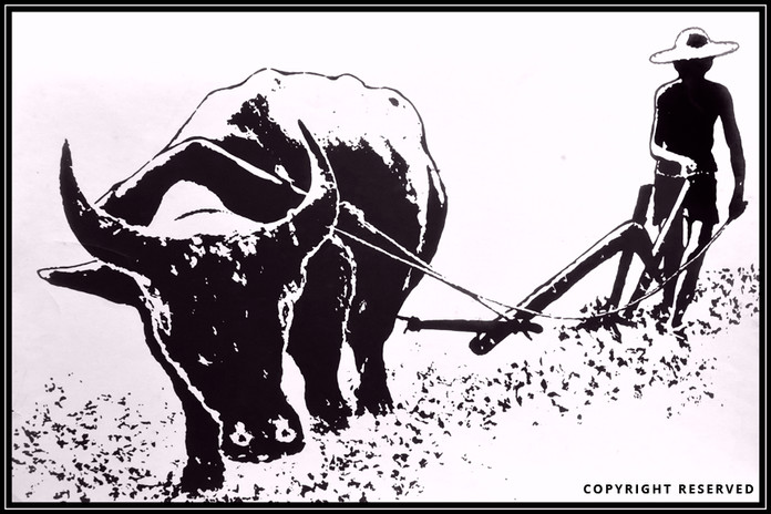 Farmer - Wellington Lee.jpg