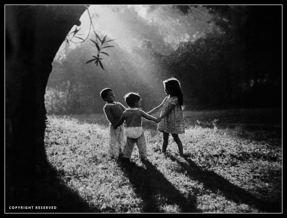 Trio At Play - P.N. Mehra-.jpg
