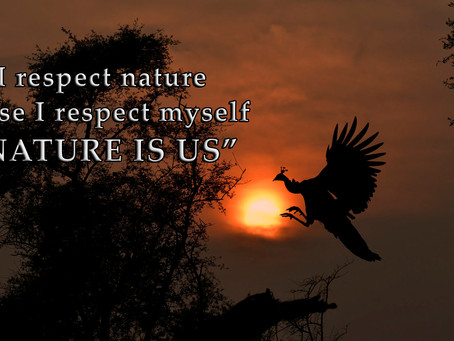 """""""Nature Is Us"""" a nature club joins IIPC as an OM Member"""