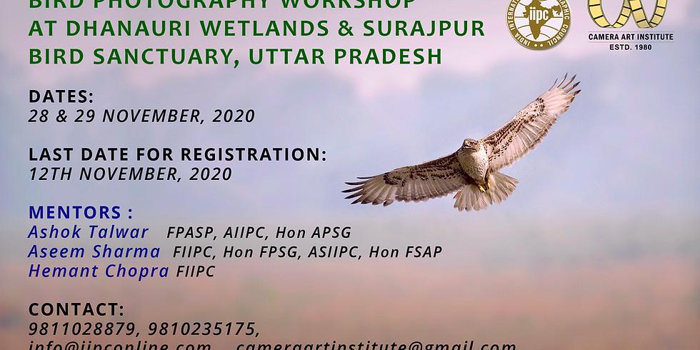 Bird Photography Workshop At Dhanauri Wetlands & Surajppur Bird Sanctuary - Nov 2020 -