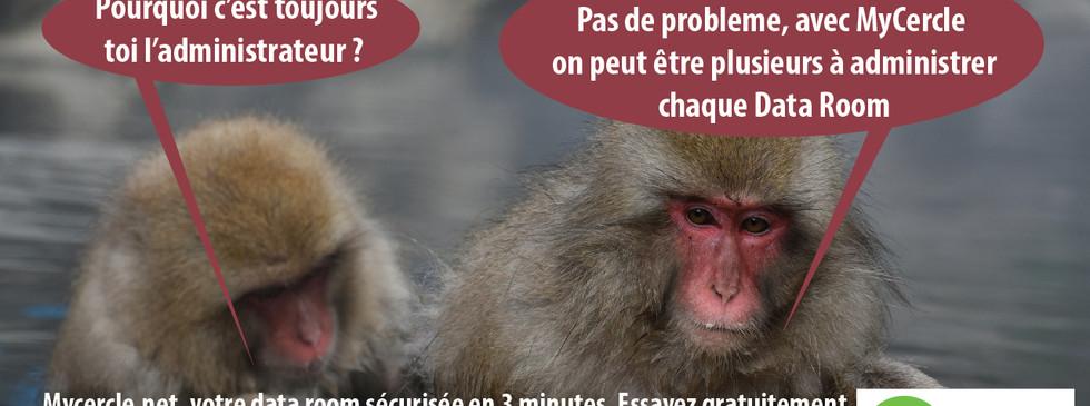 les-deux-babouins-19.jpg