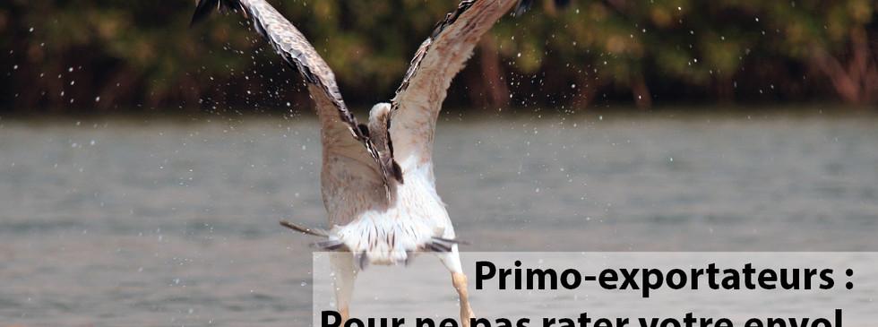 pub-albatros.jpg