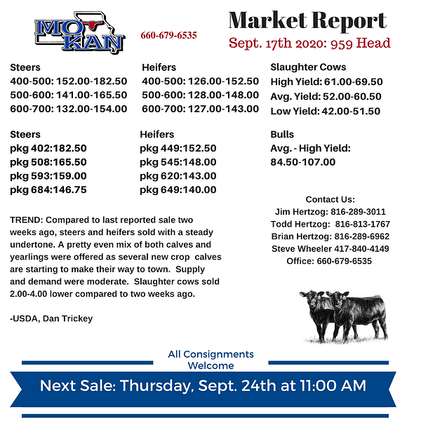 Sept 17 Market Report.png
