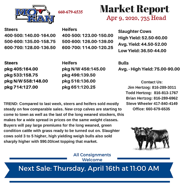 Copy of Copy of Copy of Market Report (2
