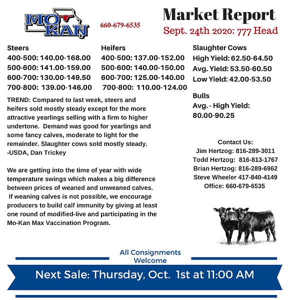 Sept 24 Market Report.png