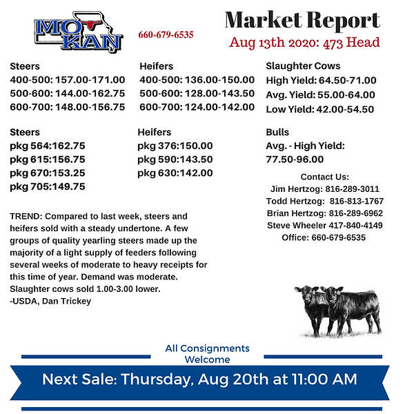 Market Report 8-13-20.png