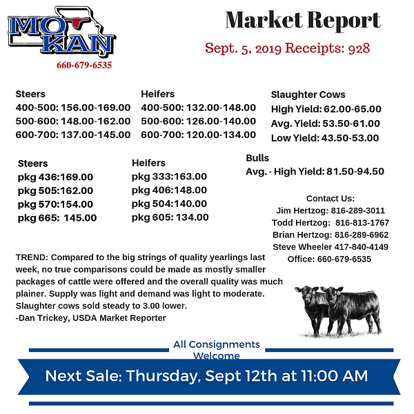 Copy of Copy of Market Report.png