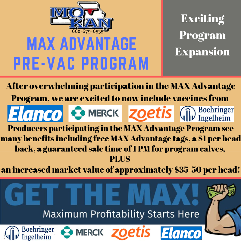 MAX Advantage Expansion (2).png