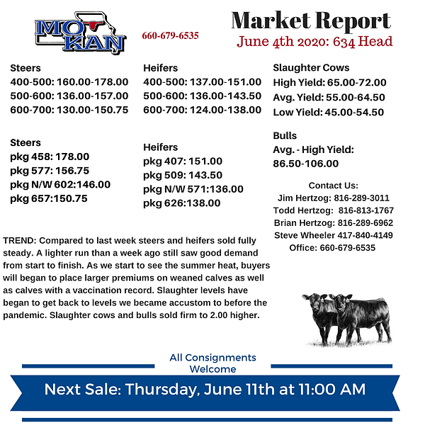 Copy of Copy of Copy of Market Report (5