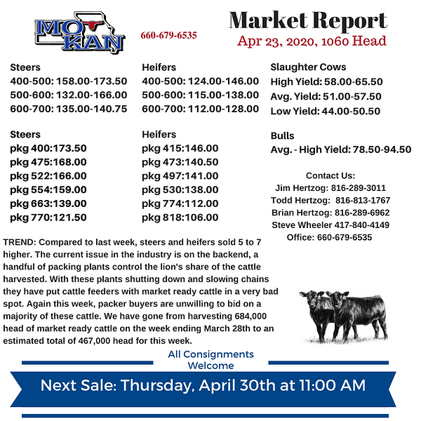 Copy of Copy of Copy of Market Report (4