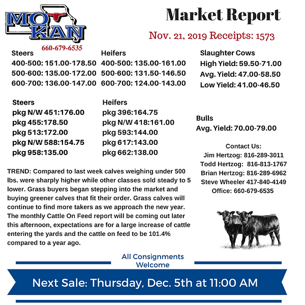Copy of Copy of Copy of Market Report (1