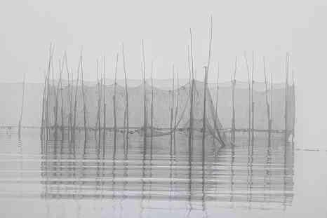 Weir in the Fog     (B19010 F.jpg)