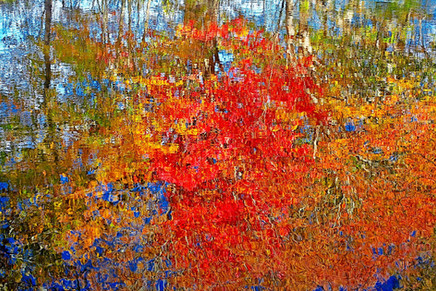 Fall Reflections   (A15035.jpg)