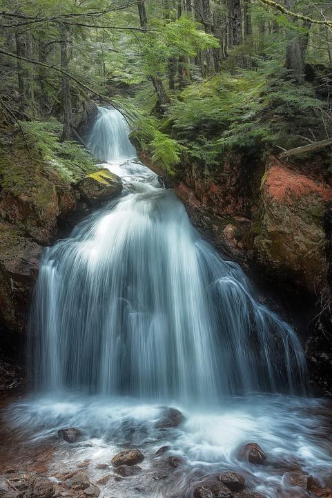 Deep Forest Falls  (N1907.jpg)