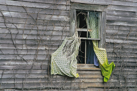 Curtains in Spring   (P105.jpg)