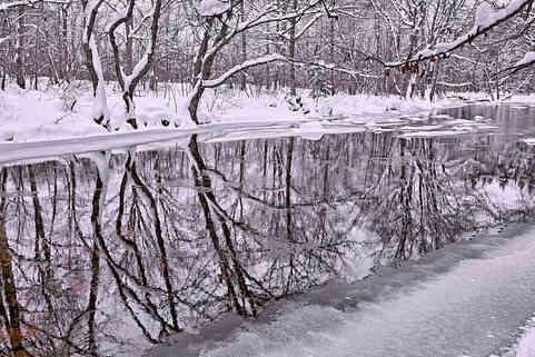 Winter reflections   (W15379.jpg)