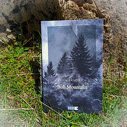 RECENSIONE: Bull Mountain (Brian Panowich)