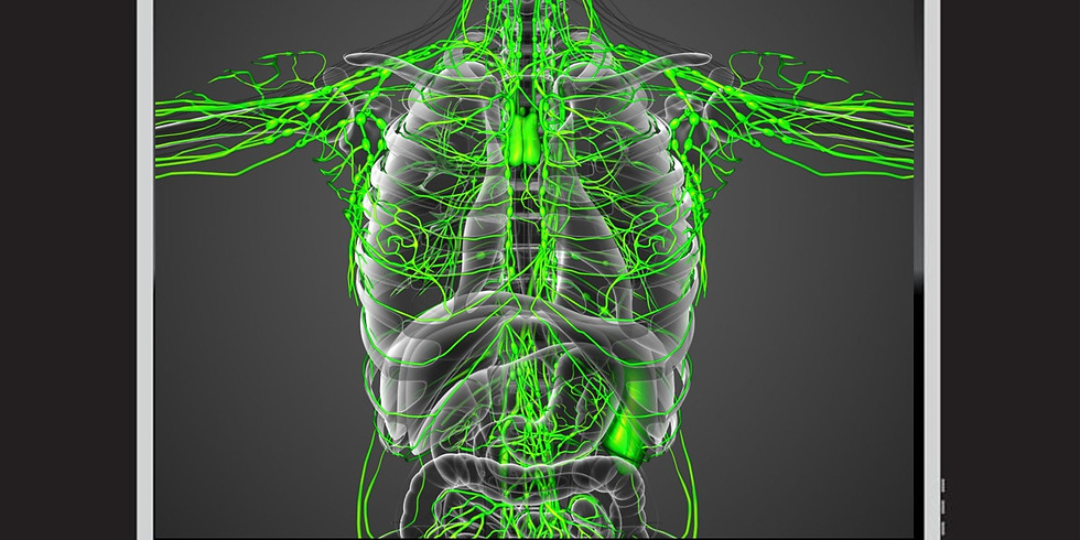 Online Lymphatic Bowen  - Pacific Time