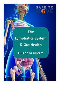 Lymph and gut.jpg