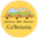 2020_Logo CB_groot met transparant.png