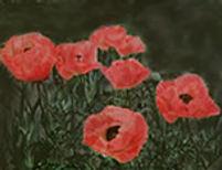 poppy2edit.jpg