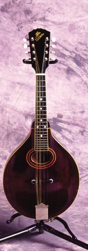 Gibson '20 A2 (Mandolin)