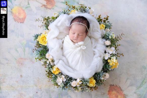 backdrop newborn #O1 (1).PNG