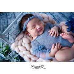 newborn bed #26.jpg