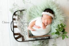 newborn basket #11.PNG