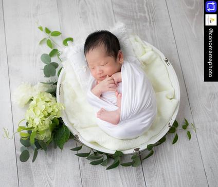 newborn photo (2).PNG