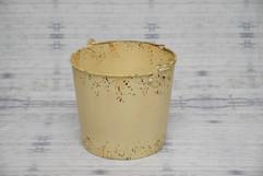 newborn bucket #1 (4).jpg