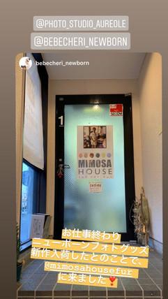 mimosa house showroom B1 (58).jpg