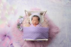 newborn bed #37.jpg