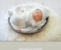 newborn bowl $L1.webp