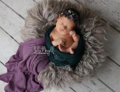 newborn flokati & wraps (9).JPG