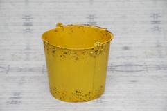 newborn bucket #1 (2).jpg