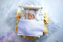 newborn bed #32.jpg