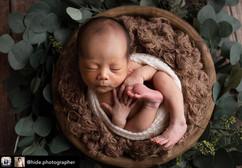 newborn wooden bowl #2.jpg