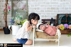 newborn bed #29.jpg