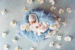 newborn romper #B1.jpg
