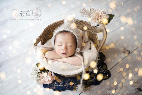 newborn basket #L1.PNG