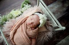newborn bed #54.JPG